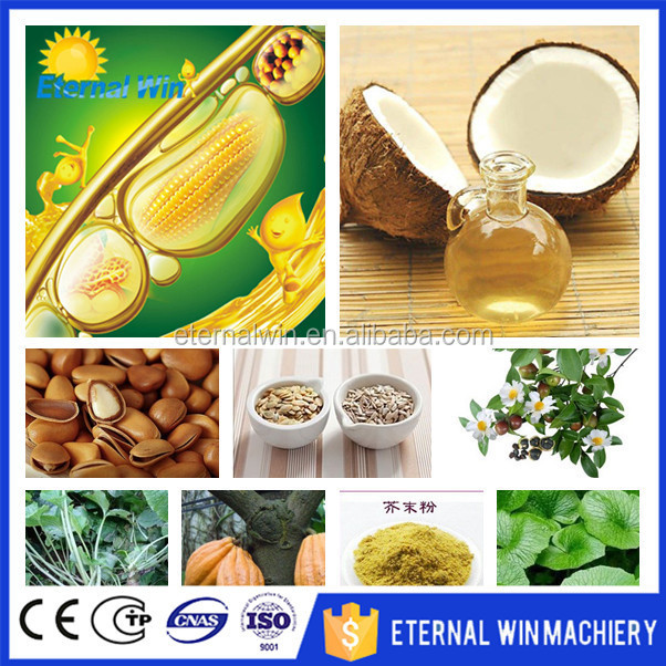 China Supplier Edible Oil Refinery Line 1t Corn Oil Processing ...