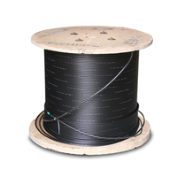 2 / 4 / 6 / 8 / 12 / 16 / 24 Core Single Mode 9/125 Outdoor Armoured GYXTW Fiber Optic Cable