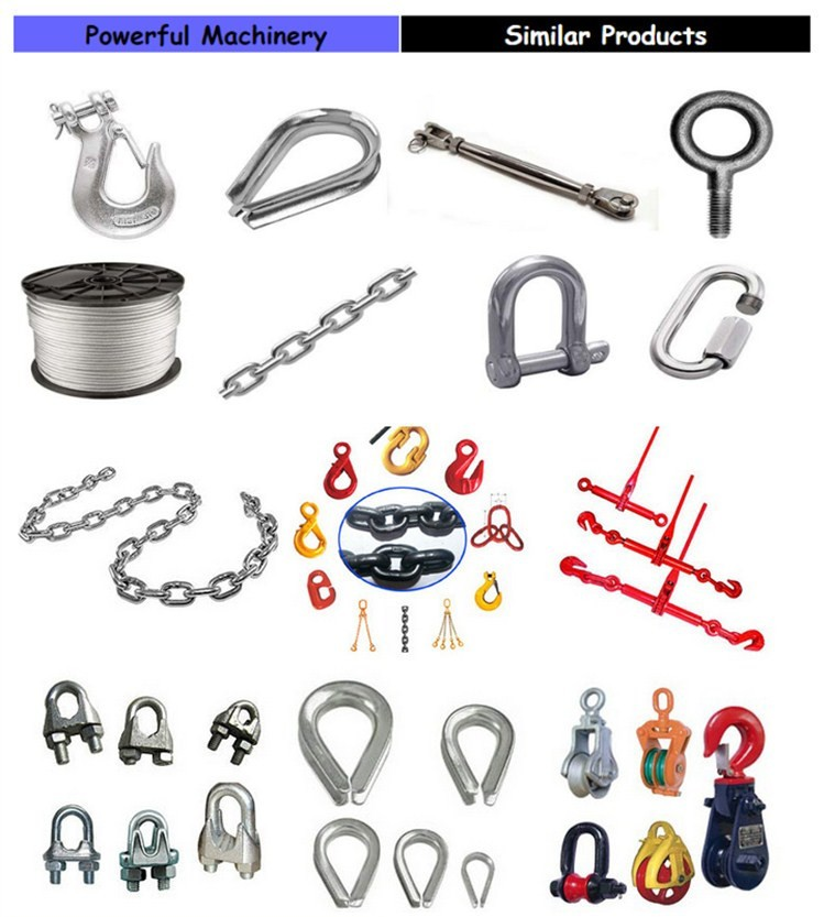 SGS Certificated Rigging Hardware Australian Type Drop Forged Omega Screw Pin Bow Shackle