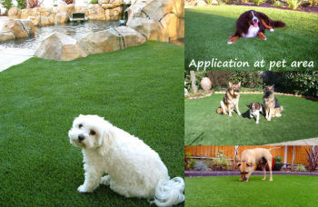 TURF ARTIFICIAL SYNTHETIC GRASS FOR PET (DOG, CAT OR TIGER)