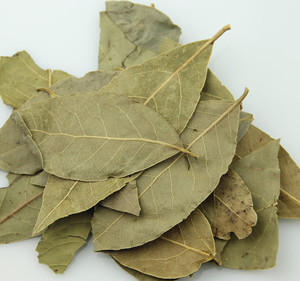 Bright Natural Green Color Dried Bay Leaves Laurel Leaves