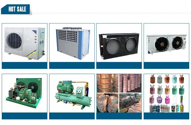 DL tipo di raffreddamento dell'aria di parti di refrigerazione uovo verdura conservazione di stoccaggio a freddo di raffreddamento di aria