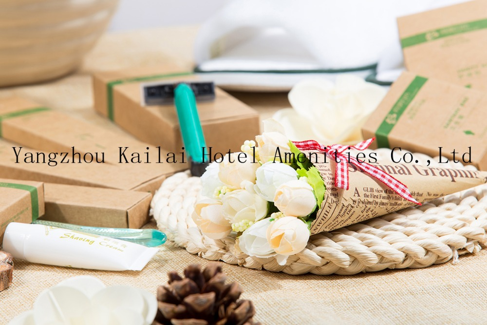 Disposable Cheap Hotel Amenity In Paper Bag Paper Bag Hotel