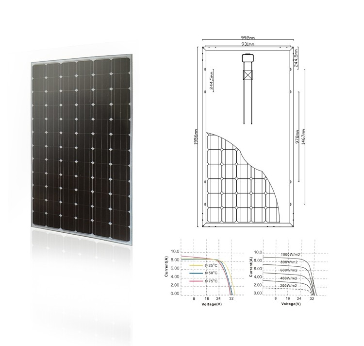 156*156 36V 300W Cheap PV Solar Panel Price With High Efficiency