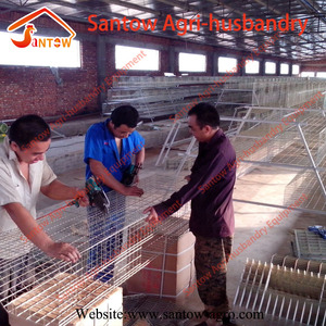 Alibaba industrial Chicken farm / layer poultry cages for kenya farms / farm land hyderabad
