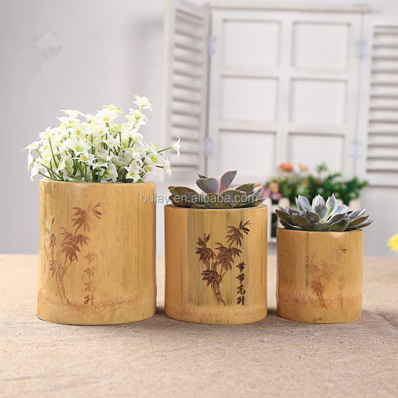 Bamboo Plants Vases Bamboo Plants Vases Suppliers And Manufacturers