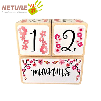 New Arrival Baby Age Blocks Wood Monthly Milestone Blocks For Baby Shower Gift Keepsake
