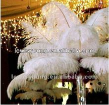 Hotel & bar weddings ostrich feather tree decoration