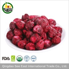 Origin Chile Healthy fruit freeze dried sour cherries tart cherry