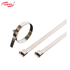 TENPRO TSL SS Banding Tie SUS304/316 Stainless Steel cable ties high quality ties Customized uncoated L type locked