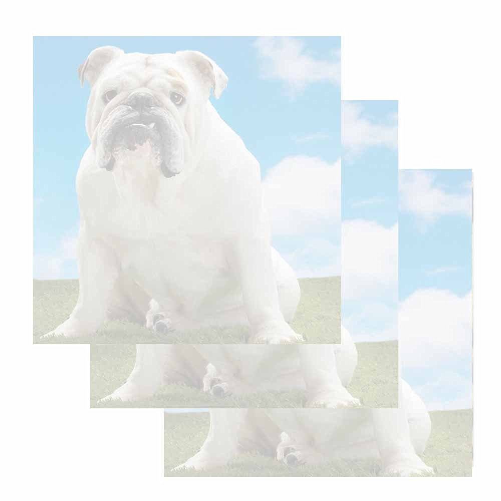 White Bulldog Dog Sticky Notes - Set of 3 - Animal Breed Theme Design - Stationery Gift - Paper Memo Pad - Party Office School Supplies