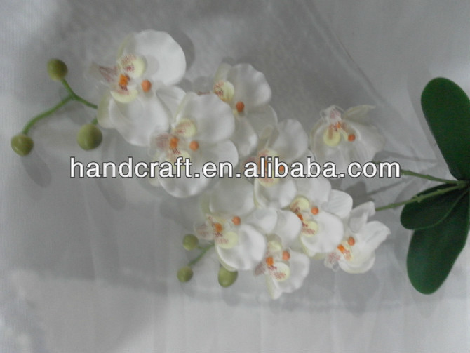 new products white small size two stems butterfly orchid for sale