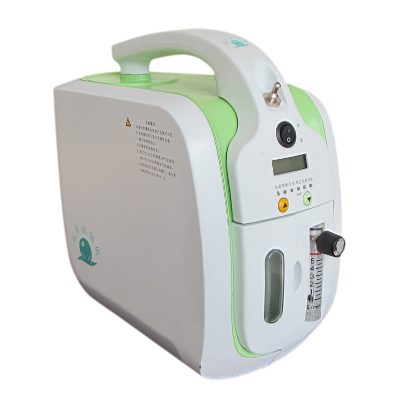 Home and travel mini portable oxygen concentrator