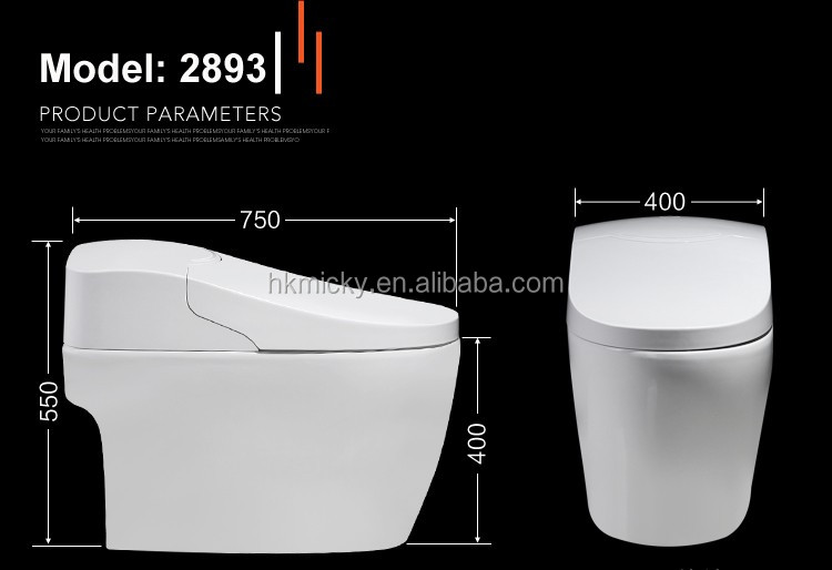 Lusso bagno in ceramica spycam spiaggia intelligente wc buy