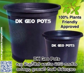 Plant Nursery Containers Plastic