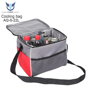 Thermoelectric Cooler Bag Supplieranufacturers At Alibaba