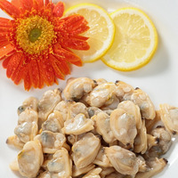 New season high quality frozen baby clams without shell