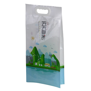 Custom Design 1kg 2kg 5kg 10kg Side Gusset Thailand Basmati Laminated Plastic Rice Bags With Handle