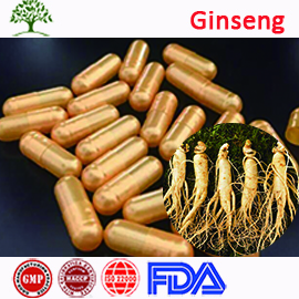 Herbal Supplement GMP Korean Red Ginseng Extract Powder Gold Capsules