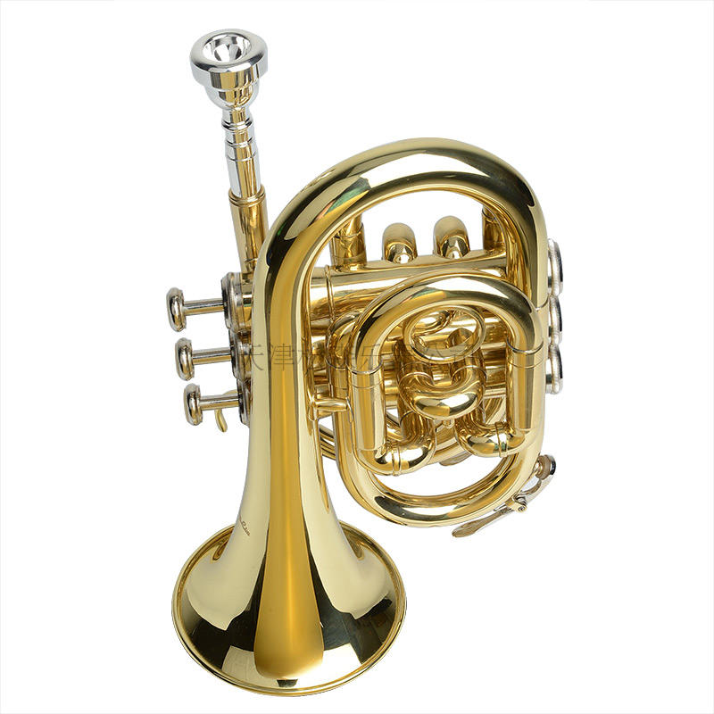 PT-8520 Bb Key Lacquer Pocket Trumpet mini trumpet