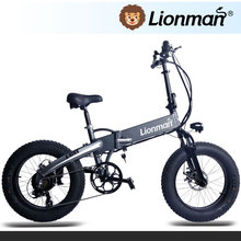 Factory Supply the latest electric bike sunny ebike