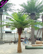 CUSTOMIZED OUTDOOR HIGH IMITATION FAKE DROUGHT PROOF LANDSCAPE ARTIFICIAL EVERGLADES PALM COCO PLANT TREES FROM ALIBABA