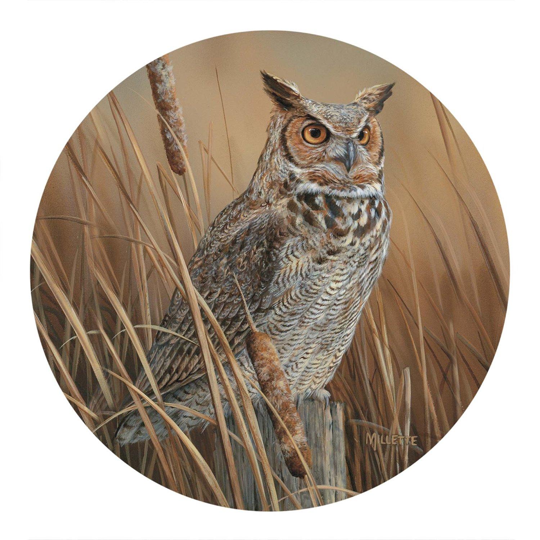 Thirstystone Drink Coaster Set, Owl