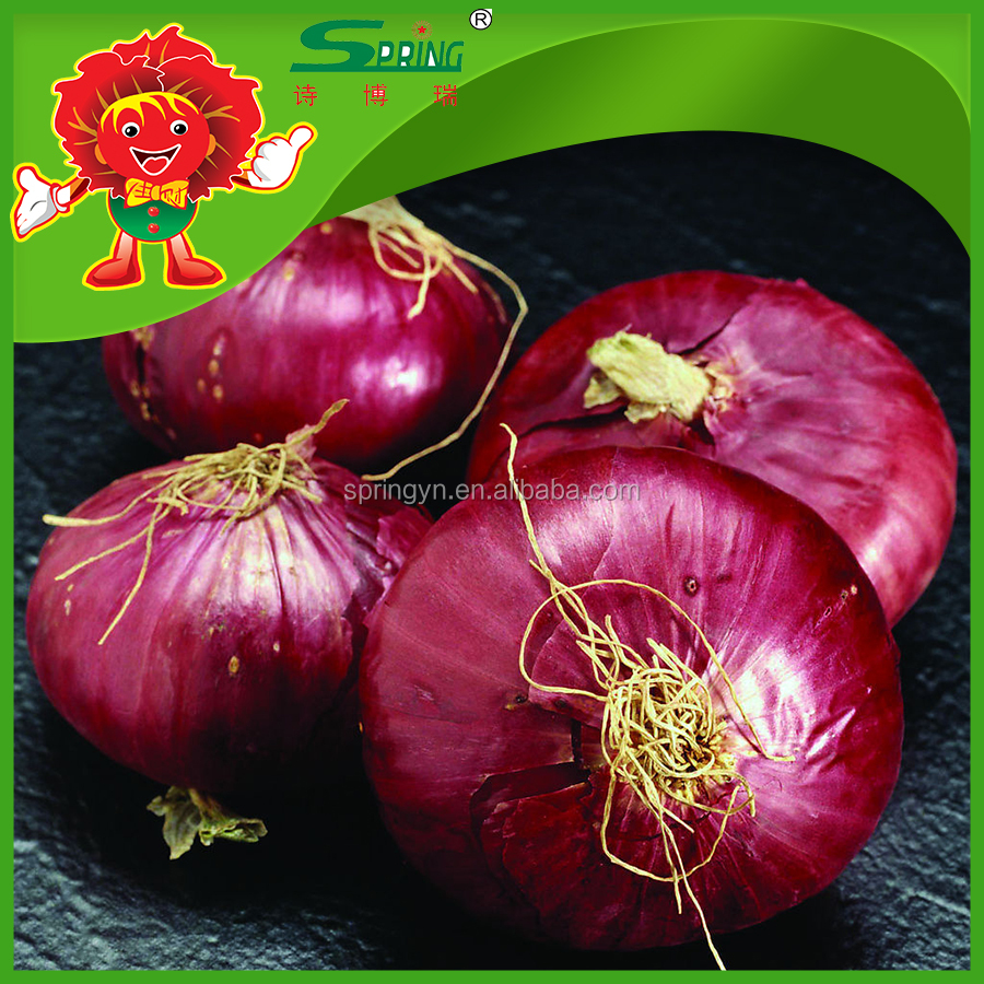 Wholesale Price Fresh RED/YELLOW Onion for Dubai Importers