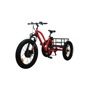 24 inch electric tricycle china(RSD-706)