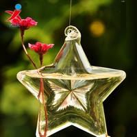Transparent glass vase fashion hydroponic flower implement creative pastoral lucky star home decorative arts and crafts
