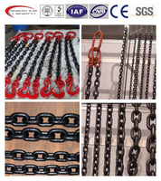 G80 Lifting chain with safety hook
