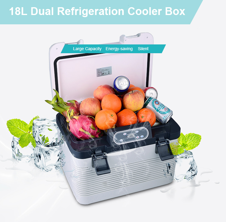 New style popular portable car mini freezer ice cooler box