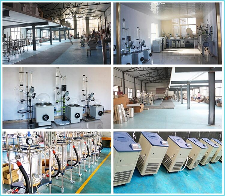 Double Layer Jacketed Vacuum Chemistry Glass Reactors 20L