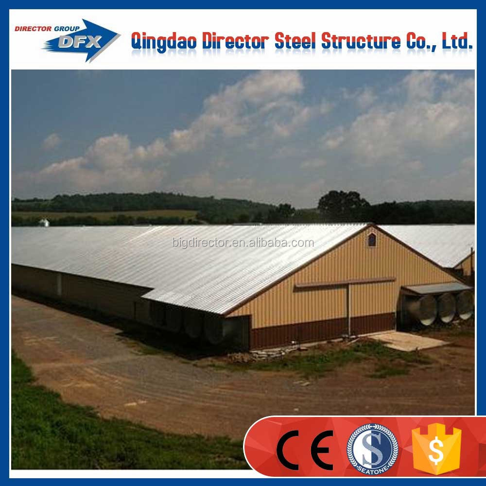 Professional Light Steel Structure Chicken House