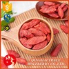 Hot sale high quality goji berry fruit best price