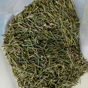Pure dried high quality Ephedra sinica plants