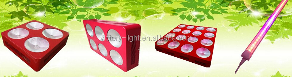 China Suppliers T8 4ft Led Grow Light Lamp Hydroponic Light