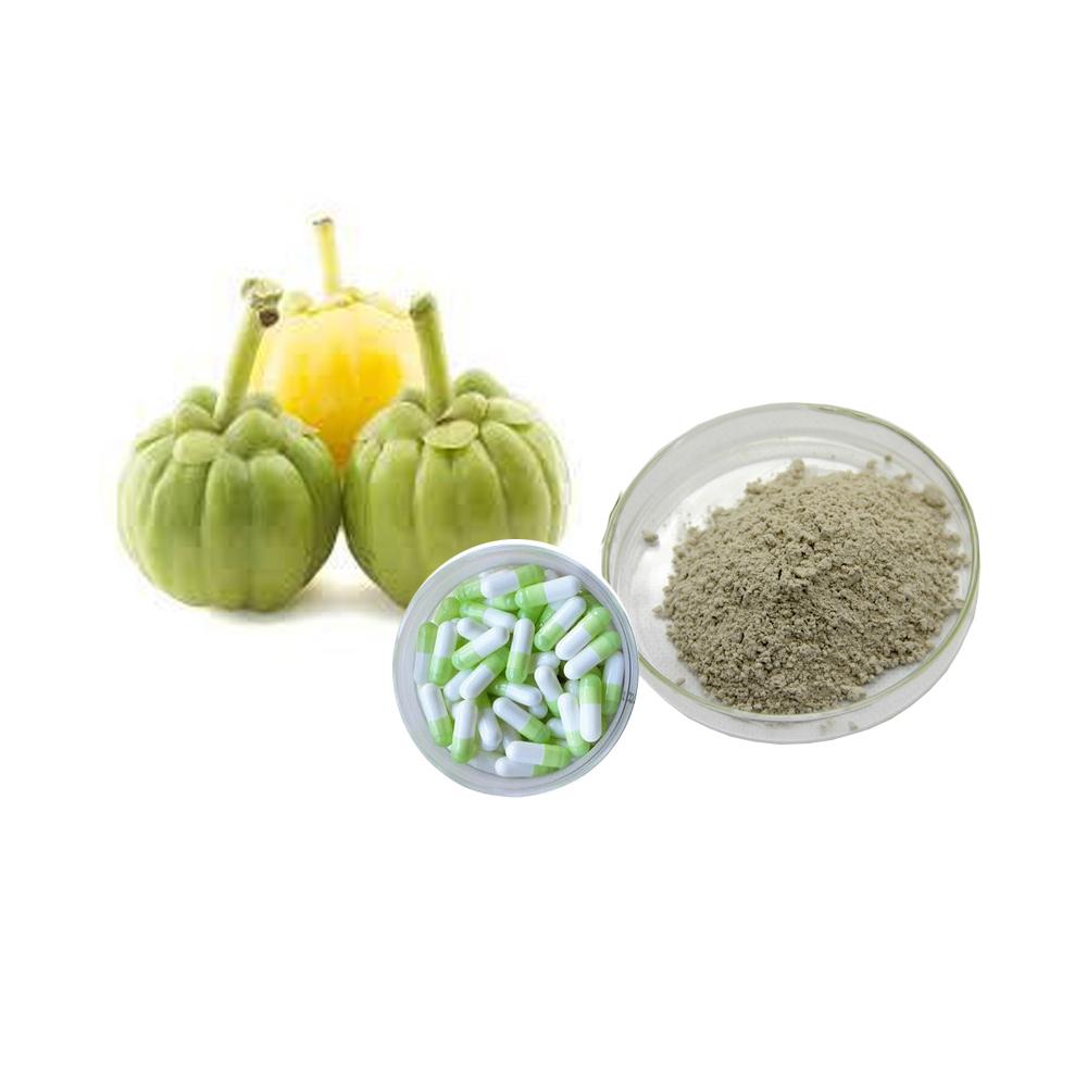 Garcinia Cambogia Fruit Extract Gamboge Extract Gamboge P E Buy Gamboge Fruit Powder Gamboge Extract Gamboge P E Product On Alibaba Com