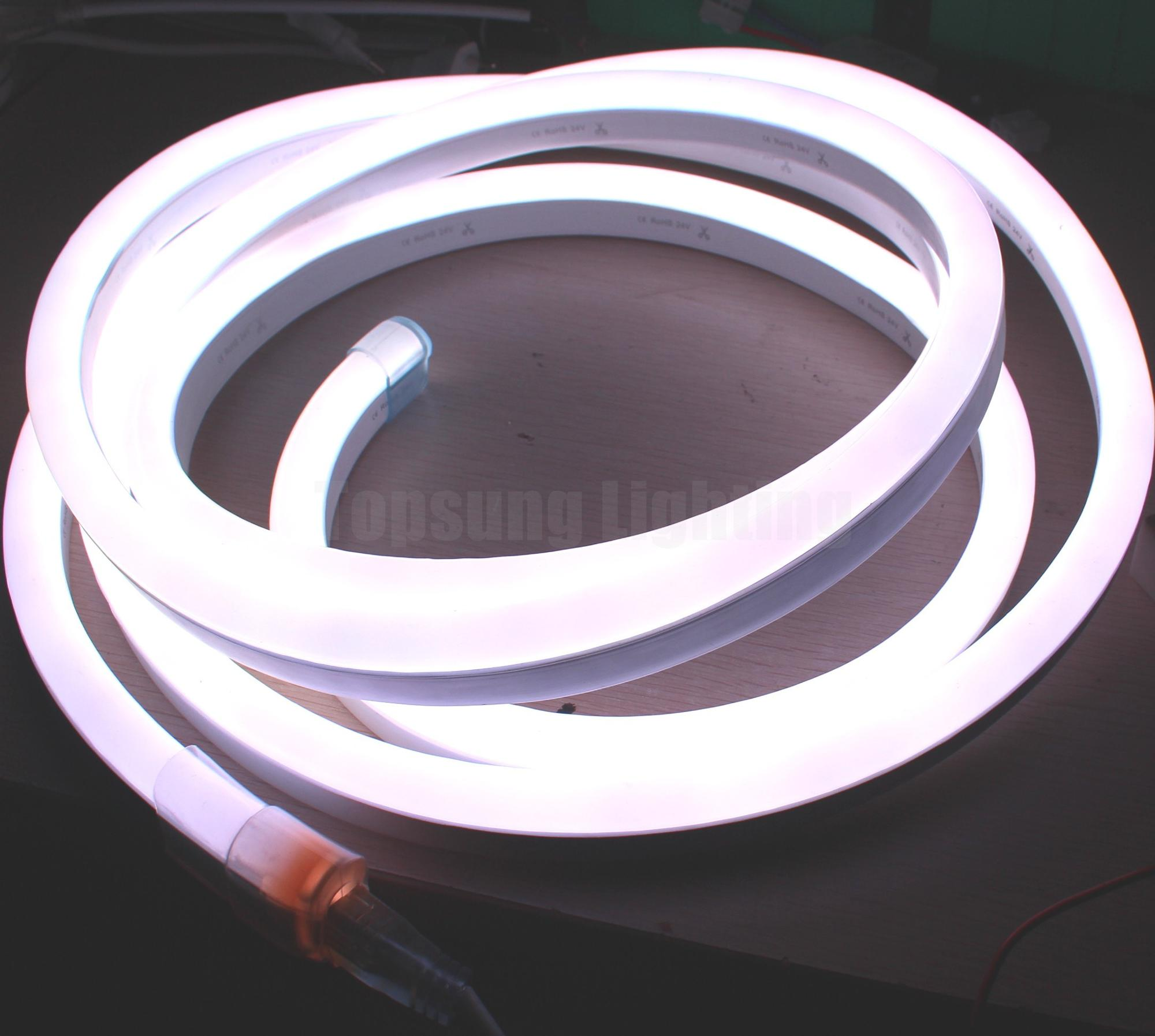 Pixel LED Neon Flex (17).JPG