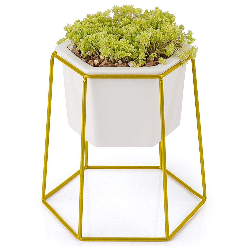 Greenaholics Succulent Pots - 4.9 inch Hexagon Ceramic Planters with Golden Iron Frame, Pots for Succulent, Cactus, White