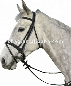 Practical P'vC horse headstall for riding