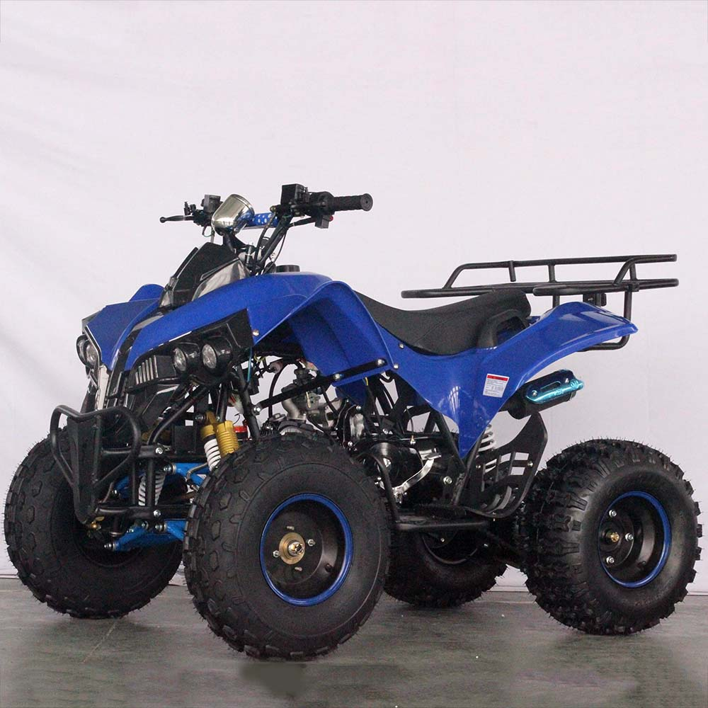 Loncin 110CC Gas Quad Bike ATV 와 125CC CE Approved