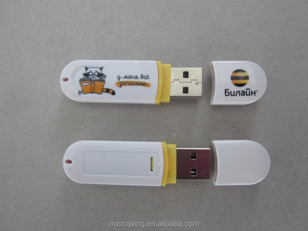 2GB Cheap USB Gift Plastic USB Flash Disk with free sample print