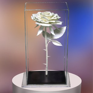 Top Rated Acrylic Rose box plexiglass flower clear rectangle single box