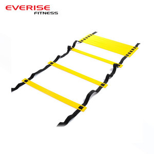 Wholesale Durable Explosive Power Guidanc Sports Agility Ladder
