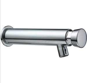 Single Self-Closing Metering Lavatory Faucet