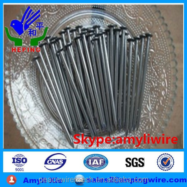 Hot Sale Common Wire Iron Nail And Polished Wire Nail in high quality