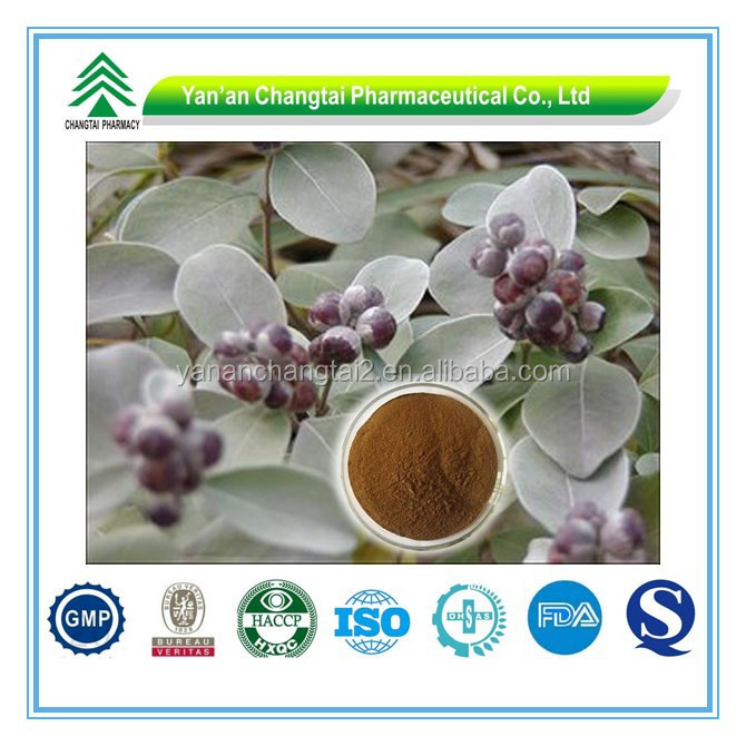 GMP Certificate Popular Herbal simple leaf Shrub Chastetree Fruit