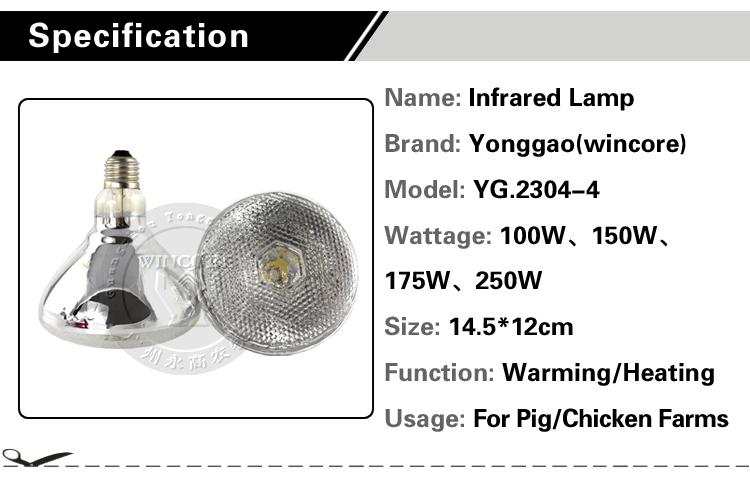 Eclairage Ampoule 100 W 150 W 175 W 250 W Infrarouge Lampe