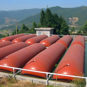 easy and quick assembling china biogas digester made in china